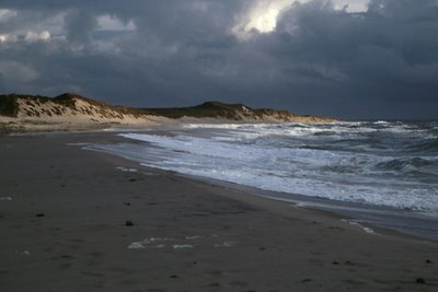 Sylt – eine Insel im Wandel
