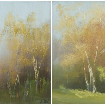 Colourimpression:Birches